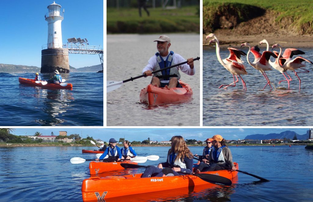 paddle experience - a montage of images taken on our tours.