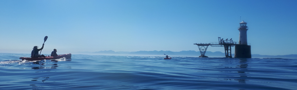 paddle experience - paddling towards the Roman Rock Lighthouse while on the Simon's Town tour.